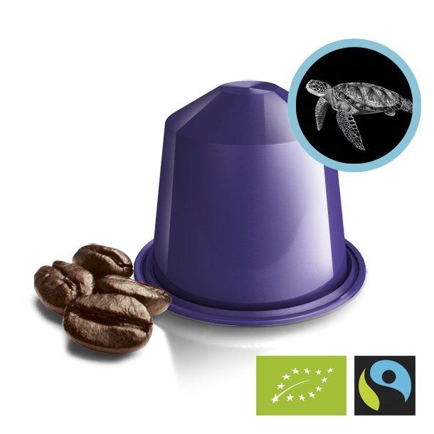 Single Origin Espresso Sumatra